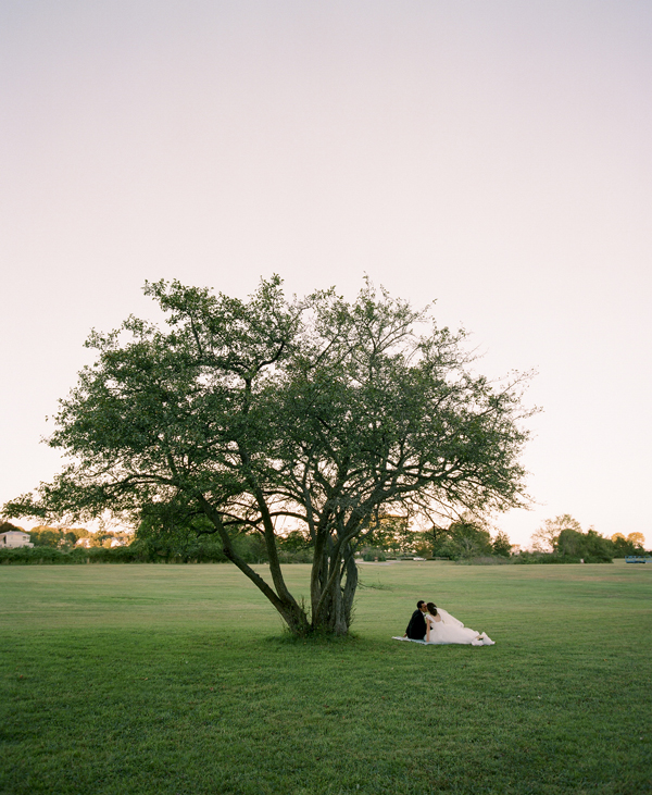 Bride and groom alone by tree.